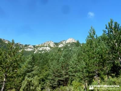 Hayedos Rioja Alavesa- Sierra Cantabria- Toloño;excursiones alrededores de madrid sierra de madrid